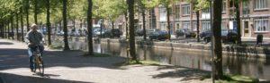 De Uilebomen, waar Van Gogh les kreeg van Mauve, anno nu.